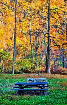 Picnic Table In Autumn Art Print by Dan Sproul