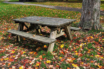 American Photograph - Picnic Table In Autumn by Louise Heusinkveld