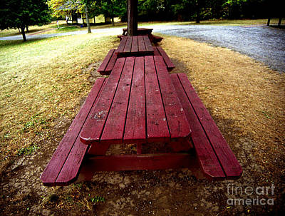 Photograph - Picnic Tables In A Row by Tom Brickhouse