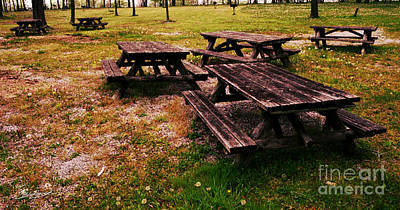 Photograph - Picnic Tables by Tom Brickhouse