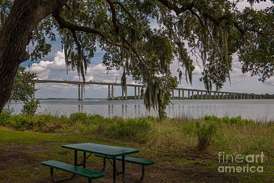 Photograph - Picnic Time by Dale Powell