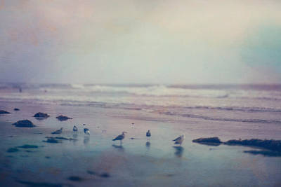 Pictorialism Photograph - Pictorialism Style Of Gulls by Roberta Murray
