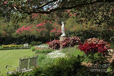 Photograph - Picture Perfect Garden by Theresa Willingham