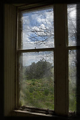 Photograph - Picture Window by Liz  Alderdice