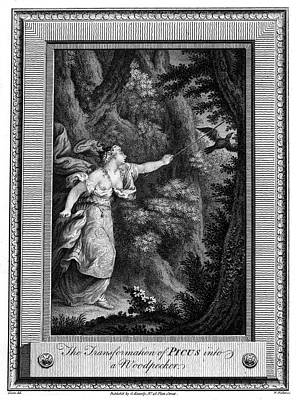 Woodpecker Drawing - Picus, A Roman Forest Deity,  Rejects by Mary Evans Picture Library