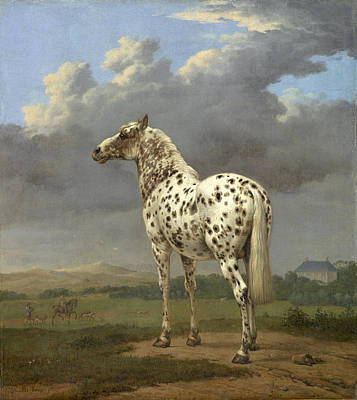 Painting - Piebald Horse, 17th Century by Getty Research Institute