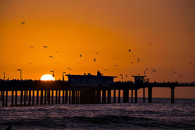 Seagull Photograph - Pier Sunset by Garry Gay