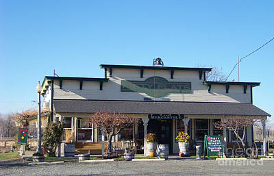 Piety Flats Winery And Mercantile Art Print