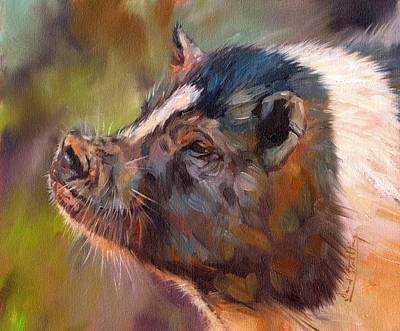 Piglets Painting - Pig by David Stribbling