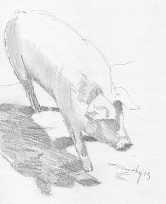 Drawing - Pig Sketch by Mike Jory