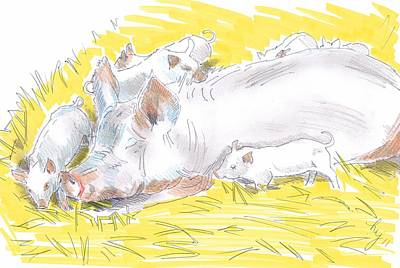 Drawing - Pig Sow And Piglets by Mike Jory