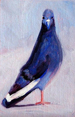Office Wall Painting - Pigeon Bird Portrait Painting by Nancy Merkle