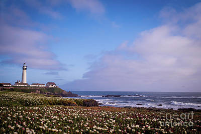 Photograph - Pigeon Point Lighthouse In Spring 3 by Theresa Ramos-DuVon