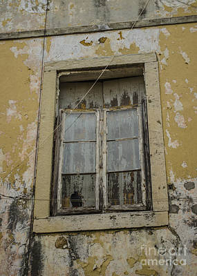 Photograph - Pigeon Roosting In An Alfama Window by Deborah Smolinske