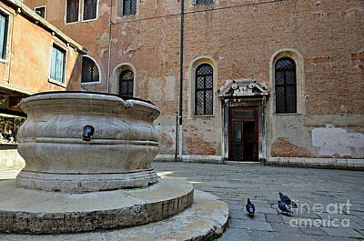 Photograph - Pigeons In A Courtyard By Well by Sami Sarkis