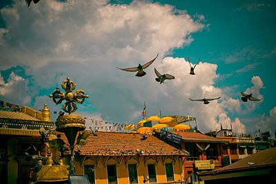 Pigeons Near Monastery In Boudnath Kathmandu Art Print by Raimond Klavins