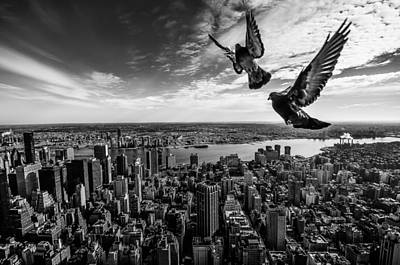 Pigeons On The Empire State Building Print by Sergiosousa