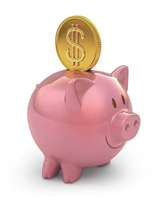 Piggy Bank Photograph - Piggy Bank And Gold Coin by Ktsdesign