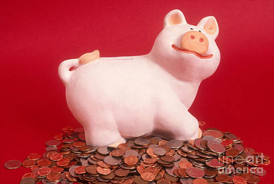 Piggy Bank On Coins Art Print by Catherine Ursillo