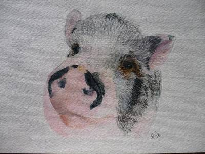 Pigatopia Painting - Piggy Pet Portraits Original Watercolor Memorial Made To Order by Shannon Ivins