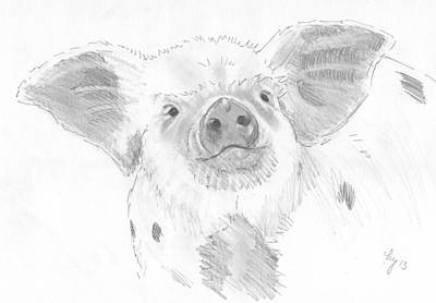 Pig Drawing - Piglet   by Mike Jory