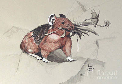 Painting - Pika Foraging by Art By - Ti   Tolpo Bader