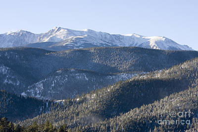 Steven Krull Royalty-Free and Rights-Managed Images - Pike National Forest in Snow by Steven Krull