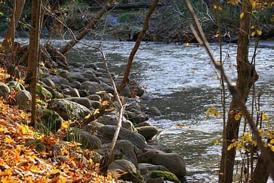 Photograph - Pikes Creek In Autumn by Kay Novy