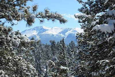 Photograph - Pikes Peak And Snowy Trees by Marilyn Burton