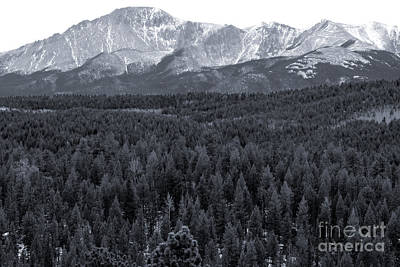 Steven Krull Royalty-Free and Rights-Managed Images - Pikes Peak from the Lovell Gulch Hiking Trail by Steven Krull