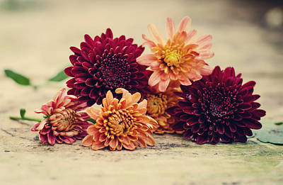 Of Autumn Photograph - Pile Of Mums by Heather Applegate