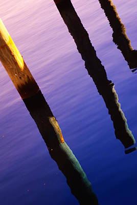 Photograph - Pile Reflections by Florene Welebny