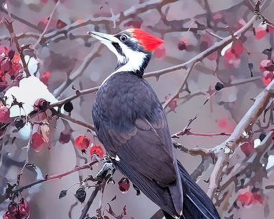 Pileated Woodpecker In Winter Art Print