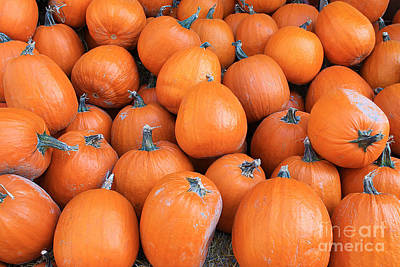 Photograph - Piles Of Pumpkins by Nina Silver