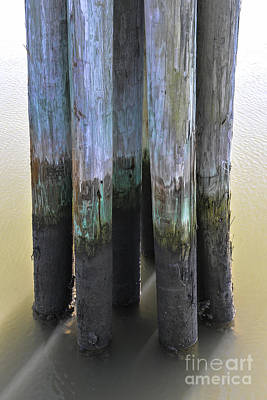 Photograph - Salt Water Piling by Dale Powell