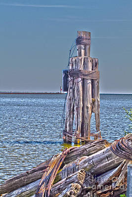 Photograph - Piling by William Norton