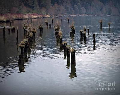 Photograph - Pilings by Chalet Roome-Rigdon
