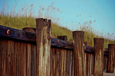 Photograph - Pilings Folly Beach Sc by E Karl Braun