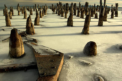 Photograph - pilings III by Jeremiah John McBride