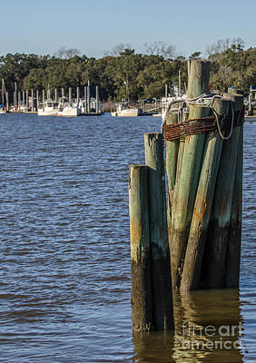 Photograph - Pilings On Jeremy Creek In Mccellanville Sc by Dale Powell