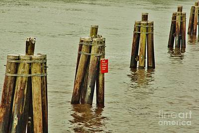 Photograph - Pilings by Wibada Photo