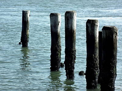 Photograph - Pillars Of The Sea by Deborah  Crew-Johnson