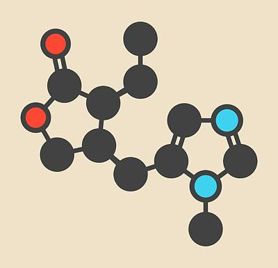 Pilocarpine Alkaloid Drug Molecule Art Print by Molekuul