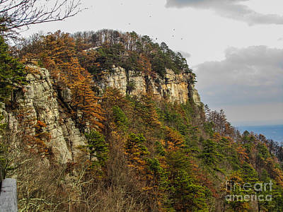 Photograph - Pilot Mountain Autumn by Jaclyn Hughes Fine Art