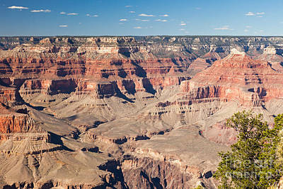 Photograph - Pima Point Grand Canyon National Park by Fred Stearns