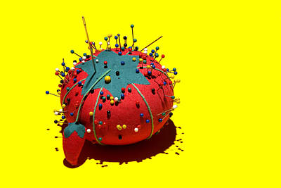 Needles Photograph - Pin Cushion by Tom Mc Nemar