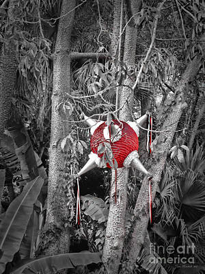 Photograph - Pinata In Woods by Joan  Minchak
