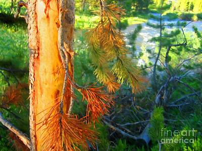 Pine Needles Mixed Media - Pine By The River by John Kreiter