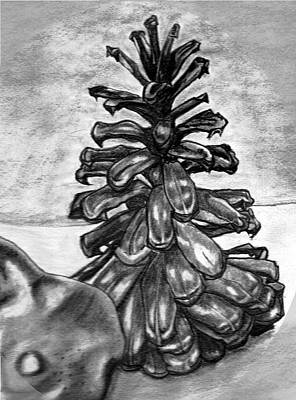 Pine Cones Drawing - Pine Cone by Kaye Gribble