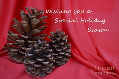 Photograph - Pine Cones For The Holidays by Mary Deal